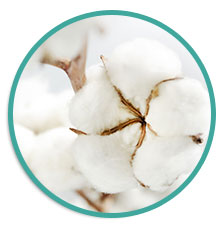 EC Head Cotton Wick